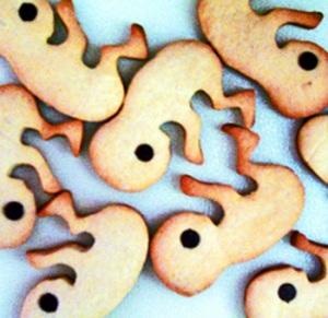 fetal-bites-cookie-cutter1