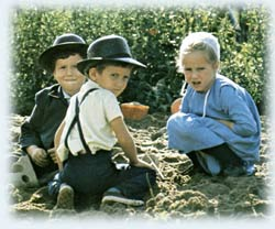 Mennonite Children