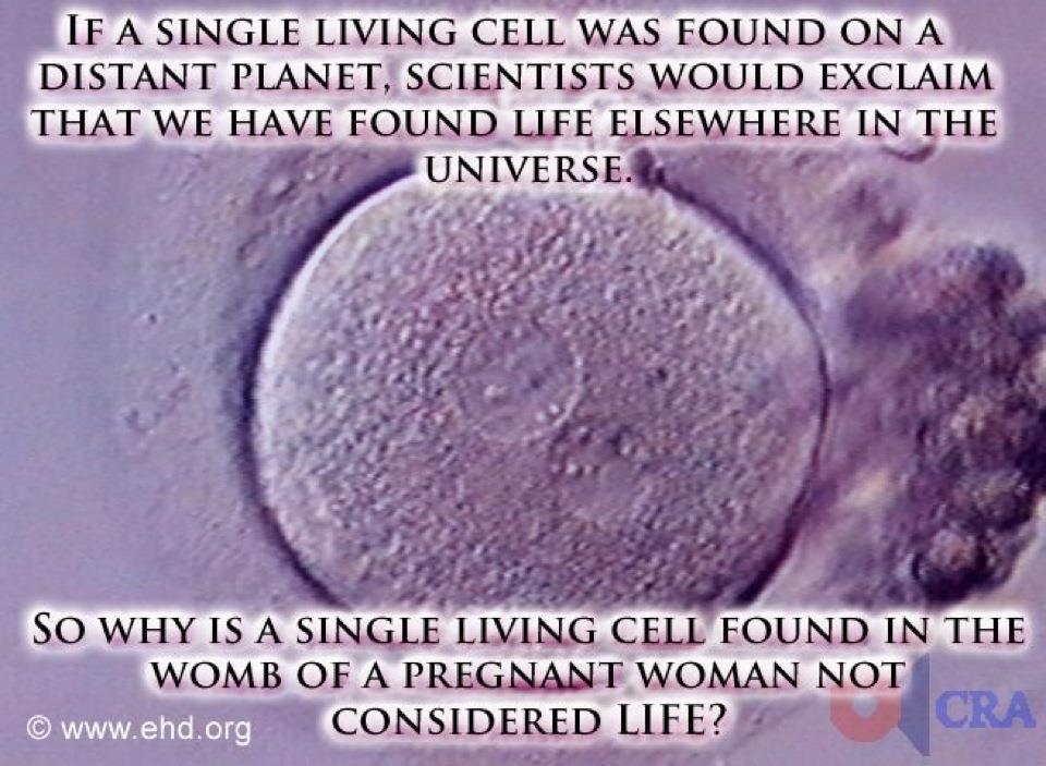 Har livet værdi?