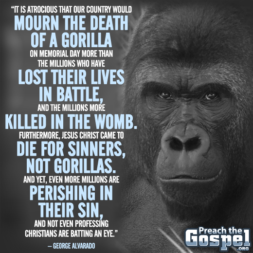 Memorial Day Gorilla