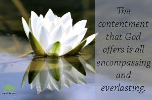 contentment-newlife